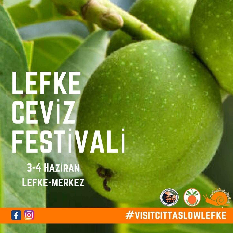 lefke-ceviz-festivali