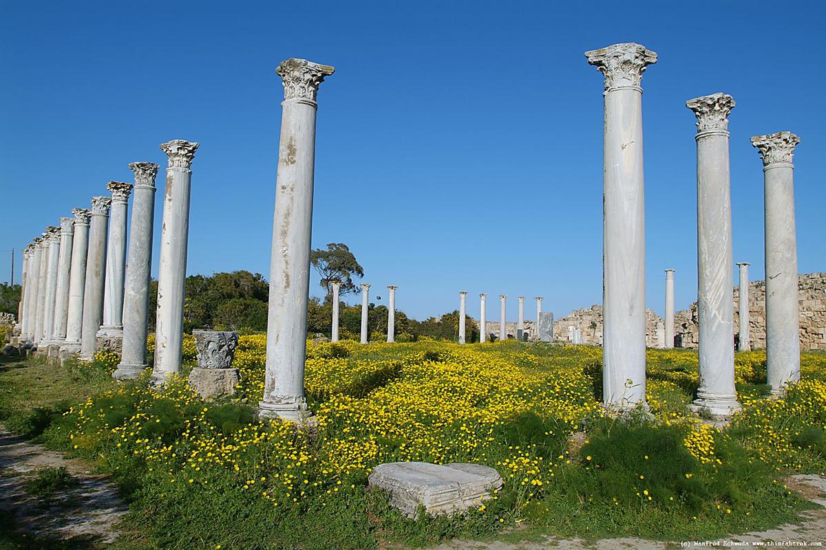 salamis harabeleri kibris 3 Kıbrıs Salamis Harabeleri